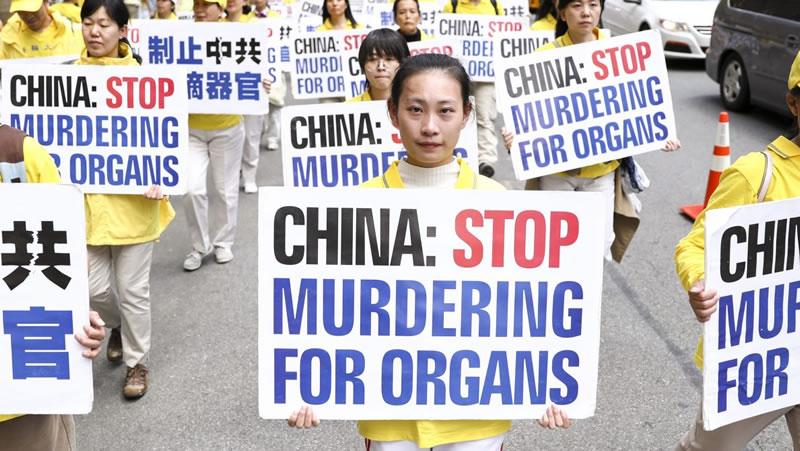 20 години международна подкрепа Фалун Гонг преследване